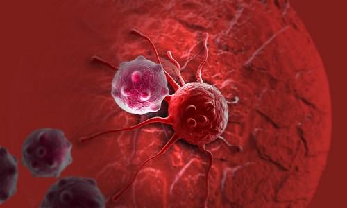 Причины роста раковых клеток